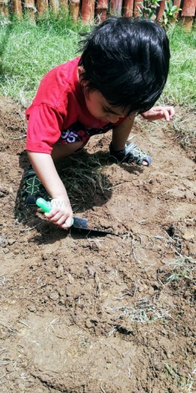 Toddler at Candy Club school enjoying farming in sunlight, working out his gross-motor skills.